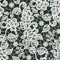 White Lace Vector Seamless Pattern. Floral Pattern.