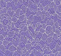 White lace violet fabric Stock Image