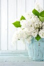 Photo : White lilac spring flowers in a blue vase  falling