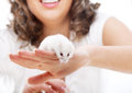 White mouse in female hands Royalty Free Stock Photo