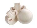 White mushroom isolated on background Stock Photo