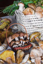 White mushrooms basket table Stock Photography