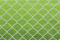 White net and green background Stock Image