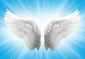 White ngel wing angel in blue background Stock Images