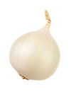 White onion isolated over white Royalty Free Stock Photo