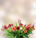 White, orange, red and yellow roses flowers, bouquet, floral arrangement, pink bokeh background, isolated Royalty Free Stock Photo