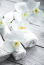 White Orchid on wooden background with towel Royalty Free Stock Photo