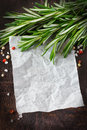 White paper with fresh rosemary and spices for note or recipe Stock Images