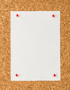 White paper note sheet with red push pin on cork board Royalty Free Stock Photo