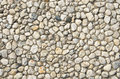 White pebble background rounded quartz pebbles inset in cement texture Royalty Free Stock Photography