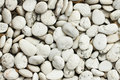 White pebble floor Royalty Free Stock Photo