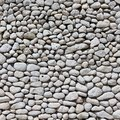 White pebble wall background made of small sea pebbles texture Stock Image