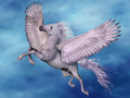 White pegasus a flies on beautiful wings through the heavens Stock Images