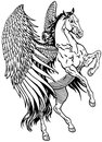 White pegasus mythological winged horse black and illustration Stock Photography