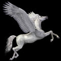 White pegasus profile a magical spreads its wings and flies up into the sky Stock Photo