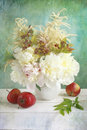 White peonies peony with red apples Stock Photos