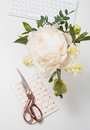 White peony flowers on work table background closeup, bloggers w Royalty Free Stock Photo