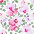 White Peony, Pink Hydrangea, P...