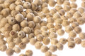 White Pepper Macro Isolated Royalty Free Stock Photo
