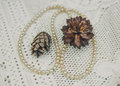 White perls with  autumnal brown cones on the lace white tablecloth.Vintage toned background Royalty Free Stock Photo