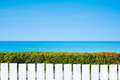 White picket fence and green leaves wall on blue sea Royalty Free Stock Photo