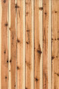 White pine knotted planks hut wall surface detail photograph of texture with wood knots and joint grooves Royalty Free Stock Photos