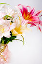 White and pink lily flowers and lace Stock Images