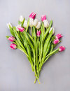 White and pink tulips bouquet on gray wooden background top view Royalty Free Stock Image