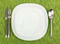 White plates utensils green tablecloth Royalty Free Stock Photos