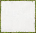 White plywood background frame of green grass Royalty Free Stock Image