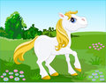 White_pony Stock Images