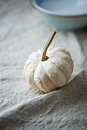 White pumpkin still life with a on linen Royalty Free Stock Photography