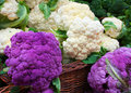 White and purple cauliflower in a straw basket at the farmers market Royalty Free Stock Image
