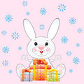 White rabbit with gifts Royalty Free Stock Photography