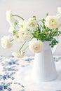 White Ranunculus flower Stock Photos