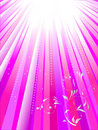 White rays on pink background Royalty Free Stock Photo