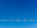 White razor wire blue sky line and background Royalty Free Stock Photo