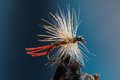 White and red fly fishing lure macro shot of a dry with hackle a tail Royalty Free Stock Photos