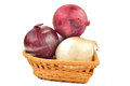 White and red onion on a white background Stock Image