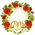 White and red rose circle frame Stock Image