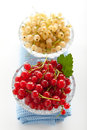 White and redcurrant red currants in a crystal vase on a background Stock Photography