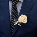 White rose boutonniere. groom, wedding accessories Royalty Free Stock Photo