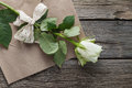 White rose on craft paper valentine day gift Royalty Free Stock Image
