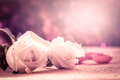White rose on mulberry paper in pink soft color effect Royalty Free Stock Photo
