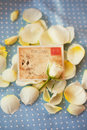 White rose and postcard on petals Royalty Free Stock Photography