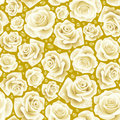 White Rose seamless background Stock Photo