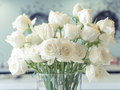 White roses in a glass vase Royalty Free Stock Image