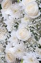 White roses and other flowers. Stock Photography