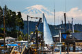 White Sailboat Gig Harbor Mount Ranier Washington Royalty Free Stock Photo