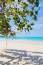 White sand beach and tree at blue sky Stock Photography